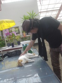 Criss氏と野良猫