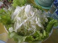新鮮な生野菜1